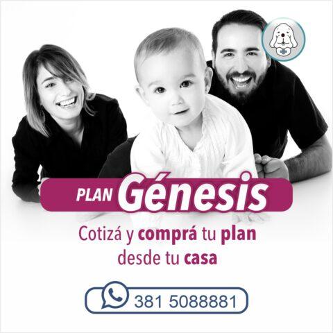 Planes-Genesis-Sepelios-San-Bernardo-Servicios-Sociales